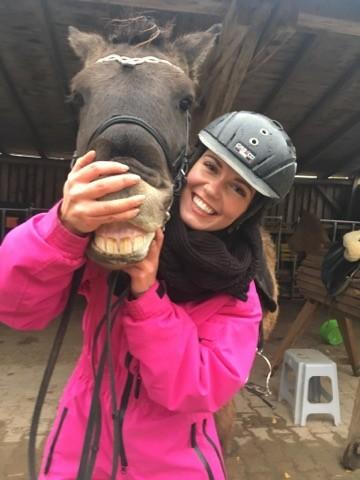 Pferde-Zahnarzt-Islandpferde-Blog-Chrissi